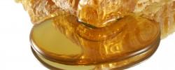 Jemandem Honig ums Maul/um den Bart schmieren - © hotblack, morguefile.com