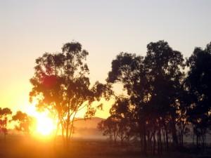 Noch ist nicht aller Tage Abend - © wallyir, morguefile.com